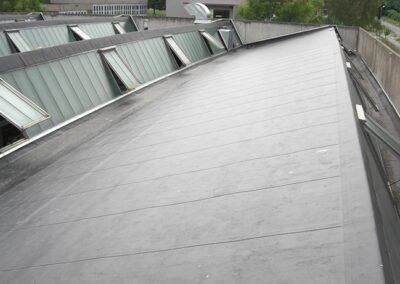 Sheddachabdichtung mit Rhepanol fk Dachbahnen verklebt im Extertal