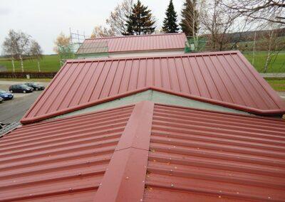 Dacheindeckung mit farbiger Sandwichpaneele in Blomberg